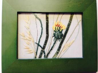 Dandelion opening